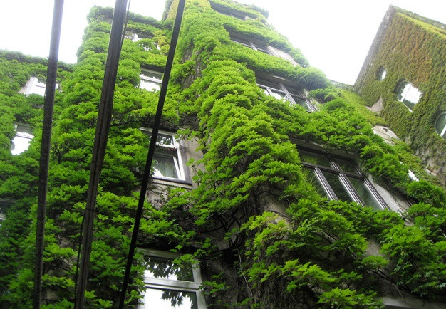 Barrios de bogota secretar a de ambiente tiene jard n for Barrio ciudad jardin sur bogota